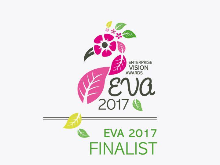 EVA Awards